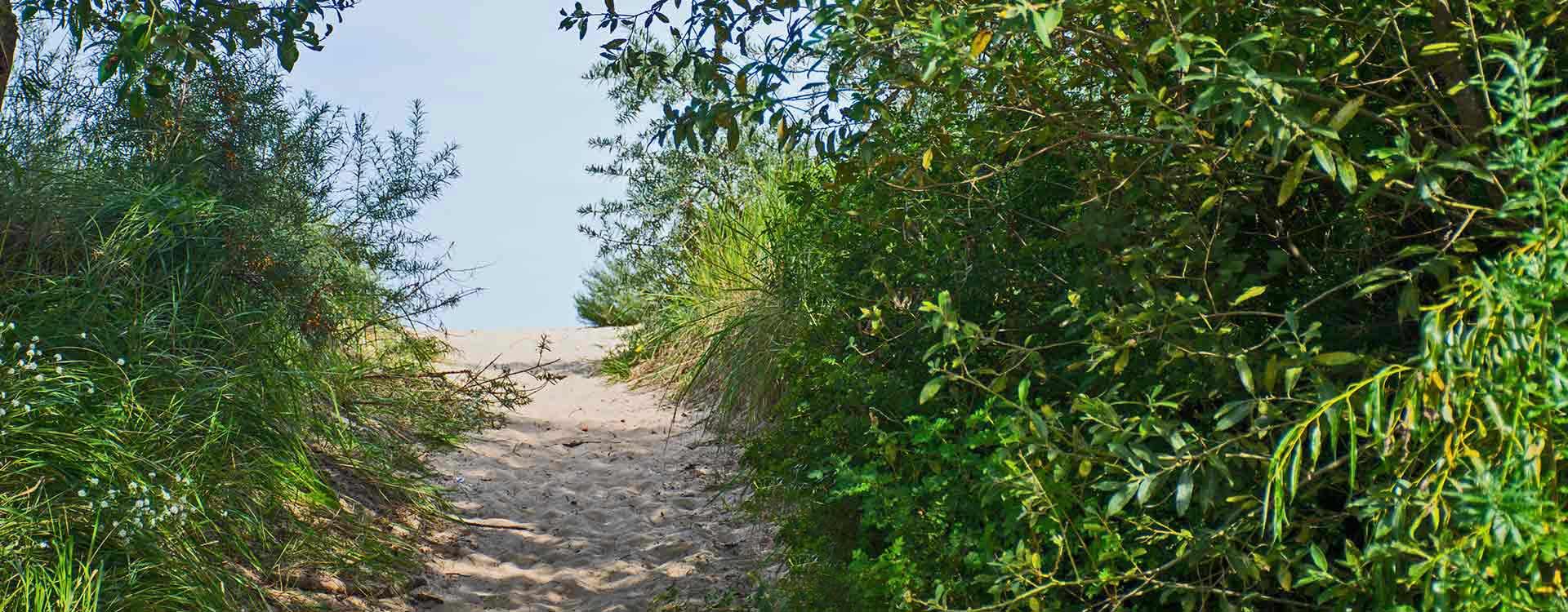 Strandaufgang Dünen Hinter der Düne Ückeritz Usedom Ostsee