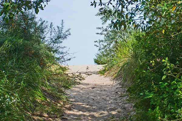 hintergrund Ückeritz Insel Usedom